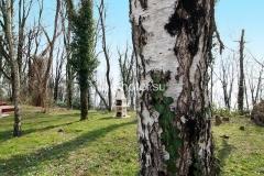 Барбекю-зона коттеджа №2